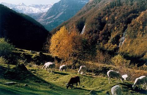 Val d'Astau