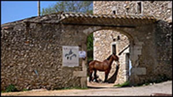 Les écuries du Château