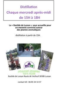 Distillation de lavande - Bastide de Lussan