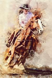 Rodéo Longhorn Ranch