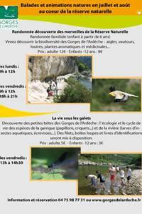 Balade et animations au coeur de la réserve naturelle des Gorges de l'Ardèche