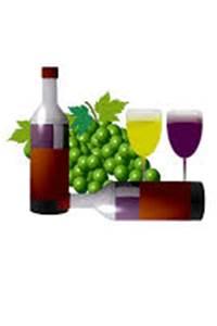 Fête du Vin Nouveau