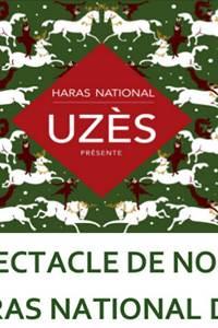 Spectacle de Noël au Haras National