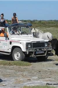 Camargue aventure - Pierrot le Camarguais