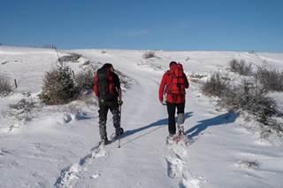 Raquette à neige avec Sentiers vagabonds