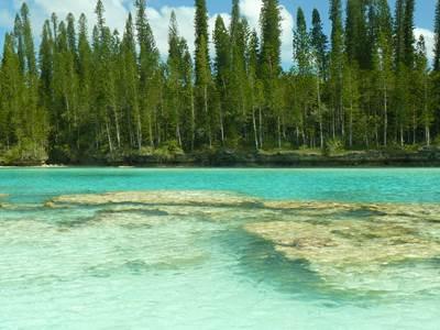 Piscine naturelle Île des Pins