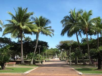 Coconut square