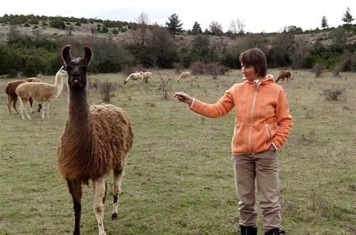 Causses et Lamas 3 ©