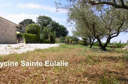 Gîte n°30G12748 – GARRIGUES STE EULALIE – location Gard © Gîtes de France Gard