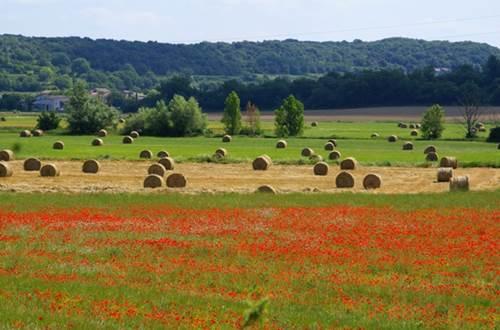 La plaine de Lussan ©