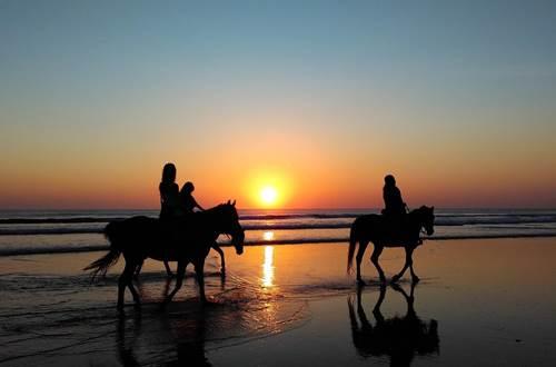 Abrivado ranch ©