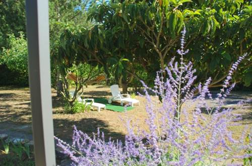HUBERT Evelyne - Le 7 en Garrigue jardin © HUBERT Evelyne