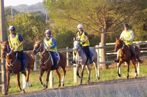 Haras National d'Uzès - course d'endurance ©
