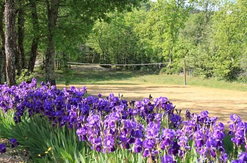 Terrain de volley et fleurs ©