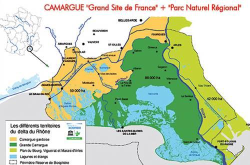 Carte CAMARGUE Occitane
