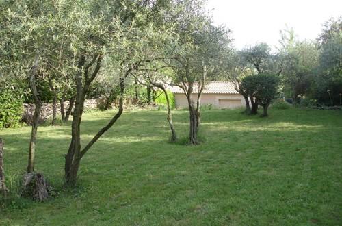 Obofix jardin arboré d'oliviers © Yvan GREER