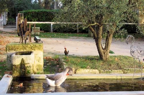 Gîte n°30G12624 – ST GILLES – location Gard © Gîtes de France Gard