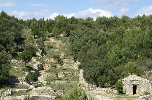 Randonnée en garrigue dans le Gard ©