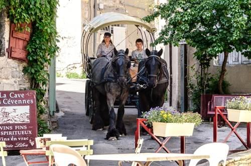 Les Calèches du Gardon Anduze ©