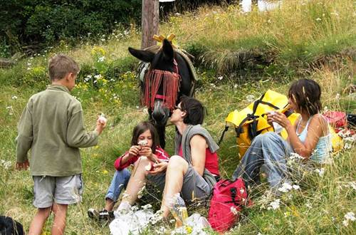 asinerie-badjane-dejeuner-sur-l-herbe-pause-repas ©