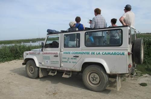 4 X 4 en Camargue avec Pïerrot le Camarguais ©